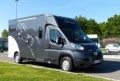 Camion chevaux ECOSTAR LUXE CABINE 5 PLACES